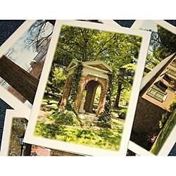 Orange Cat Art 'Davidson Seasons Collection' Note Cards (Set of 4)