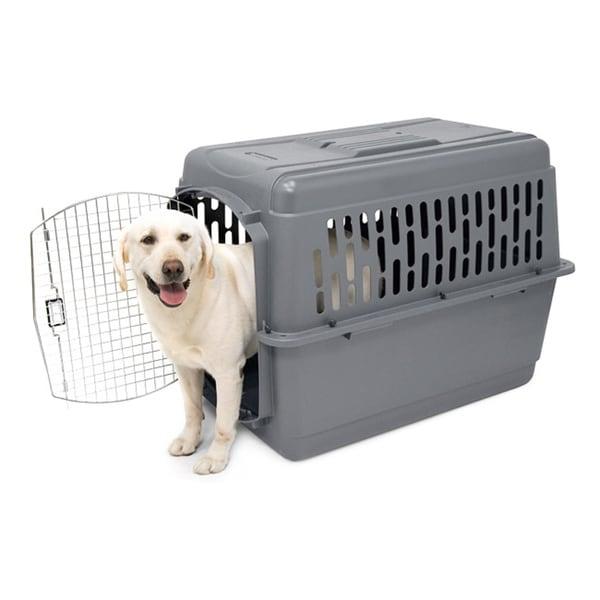 aspen pet xlarge pet porter ii free shipping today