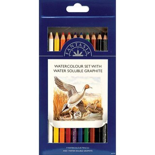 Pro Art Fantasia Watercolor 10-piece Pencil Set