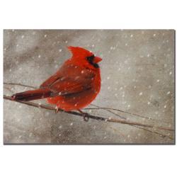 Lois Bryan 'Cardinal in Winter' Canvas Art