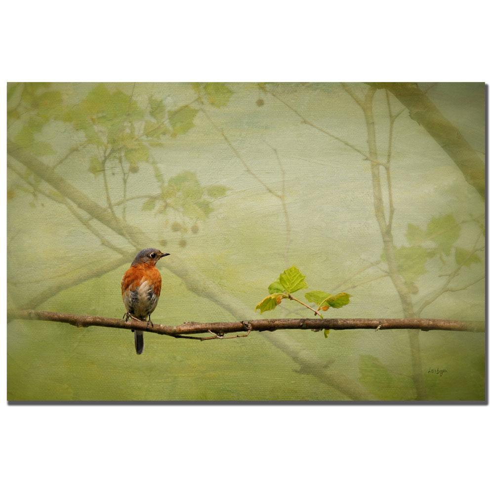 Lois Bryan \'Bluebird in Spring\' Canvas Art - Free Shipping Today ...