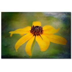 Lois Bryan 'Textured Black-eyed Susan' Canvas Art