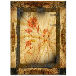 Miguel Paredes 'Gold Frame II' Canvas Art