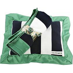Oliver B Navy and Green Stroller Blanket and Pillow Set - Thumbnail 1