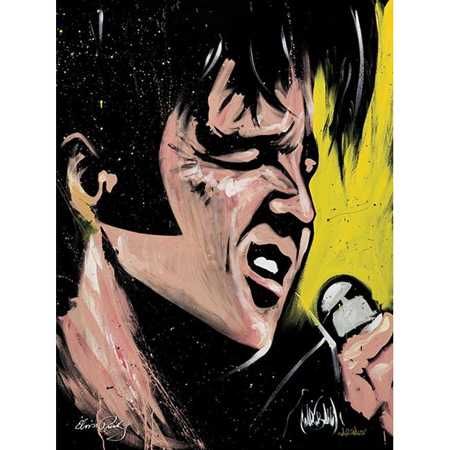 David Garibaldi Elvis 68 Special Gallery-wrapped Canvas Art - Thumbnail 0