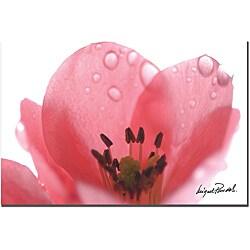 Miguel Paredes 'Pink Drops' Canvas Art