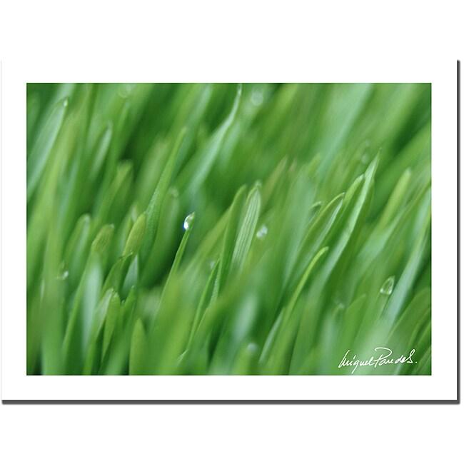 MIguel Paredes 'Plant Close-up IV' Canvas Art