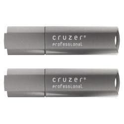 SanDisk 4GB Cruzer Professional USB Flash Drive (Pack of 2)
