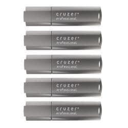 SanDisk 4GB Cruzer Professional USB Flash Drive (Pack of 5)