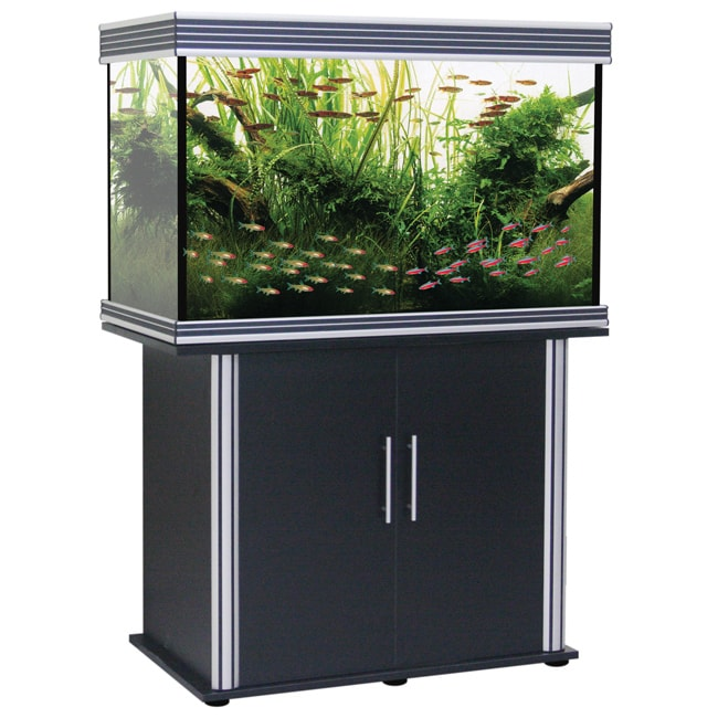 Nautilus Collection 58-gallon Black Tank and Stand