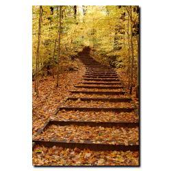 Kurt Shaffer 'Fall Stairway' Canvas Art - Thumbnail 1