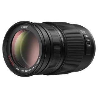 Panasonic H-FS100300 - 100 mm to 300 mm - f/4 - 5.6 - Telephoto Zoom