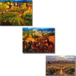 Craig and Anderson 'Views of Tuscany' 3-piece Canvas Art Set