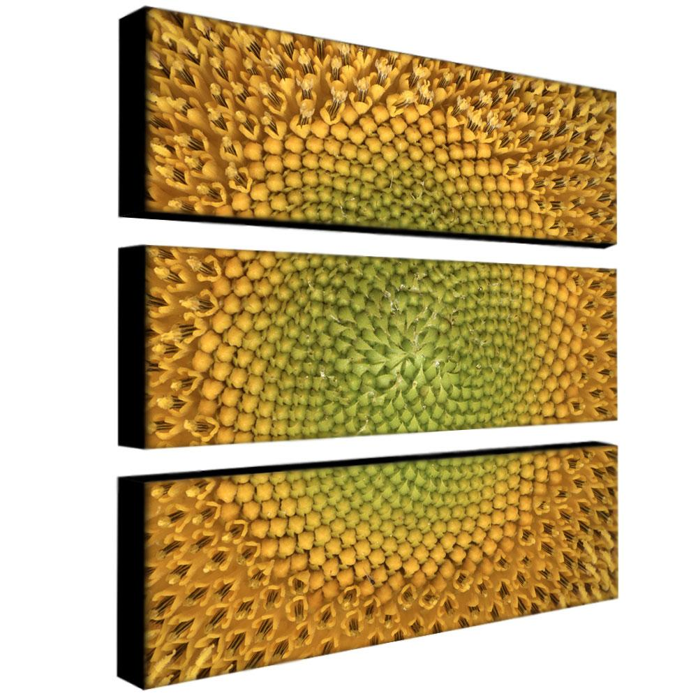 AIANA \'Sunflower\' 3-panel Art Set - Free Shipping Today - Overstock ...