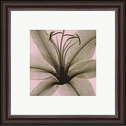 Steven N. Meyers 'Lily' Framed Print Art