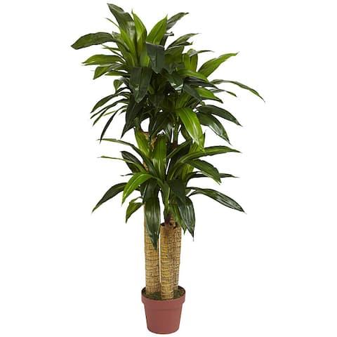 Silk 4-foot Potted Corn Stalk Dracaena Plant - Green - 4'h x 2'd
