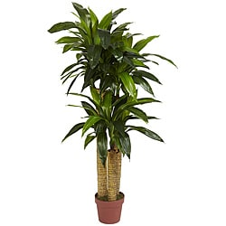 Silk 4-foot Potted Corn Stalk Dracaena Plant