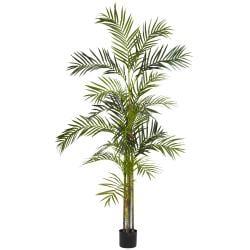 Areca Palm 6-foot Silk Tree