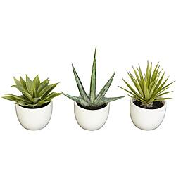 The Curated Nomad Zaius Set of 3 Southwest Collection Agave Silk Plants