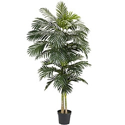 Golden Cane Palm 8-foot Silk Tree