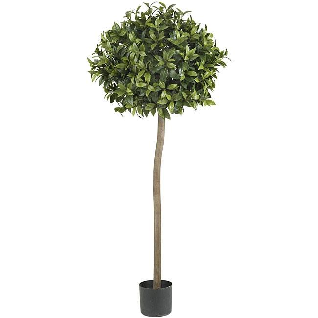 Five-foot Sweet Bay Ball Topiary Silk Tree