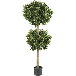 Sweet Bay Double Ball Silk Tree