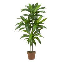 Porch & Den Mill Park Division Dracaena Real Touch Artificial Plant