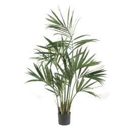 Five-foot Silk Kentia Palm Tree - Thumbnail 0