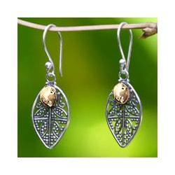 Handmade Sterling Silver 'Golden Dew' Filigree Earrings (Indonesia)