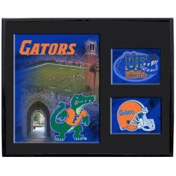 Florida Gators Mylar Wall Hanging Framed Logo - Thumbnail 1