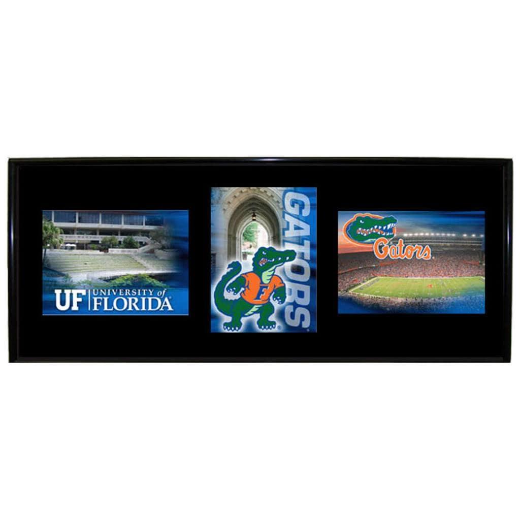 Florida Gators Mylar Wall Hanging Framed Triple Shot Logo