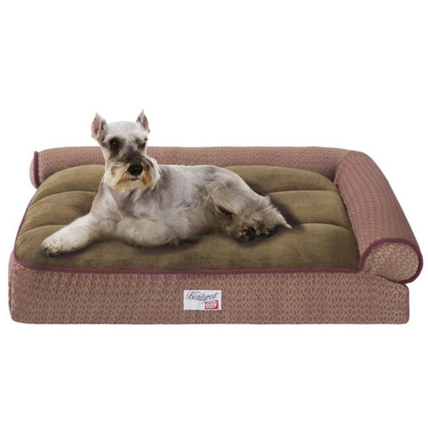 Innerspring Or Foam Mattress Simmons Beautyrest Right Angle Bolster Lounger Pet Bed - Free Shipping ...
