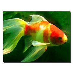 Amy Vangsgard 'Goldfish' Canvas Art