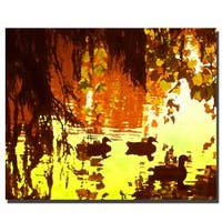 Amy Vangsgard 'Ducks on Lake' Gallery-Wrapped Canvas Art