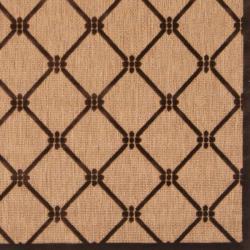 Woven Dorchester Indoor/Outdoor Geometric Rug (3'9 x 5'8)