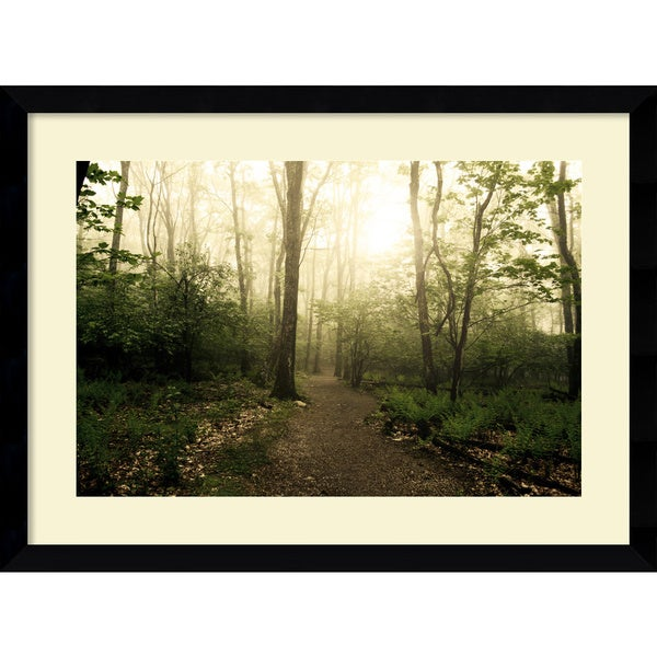 Andy Magee 'Appalachian Trail' 39 x 29-inch Framed Art Print