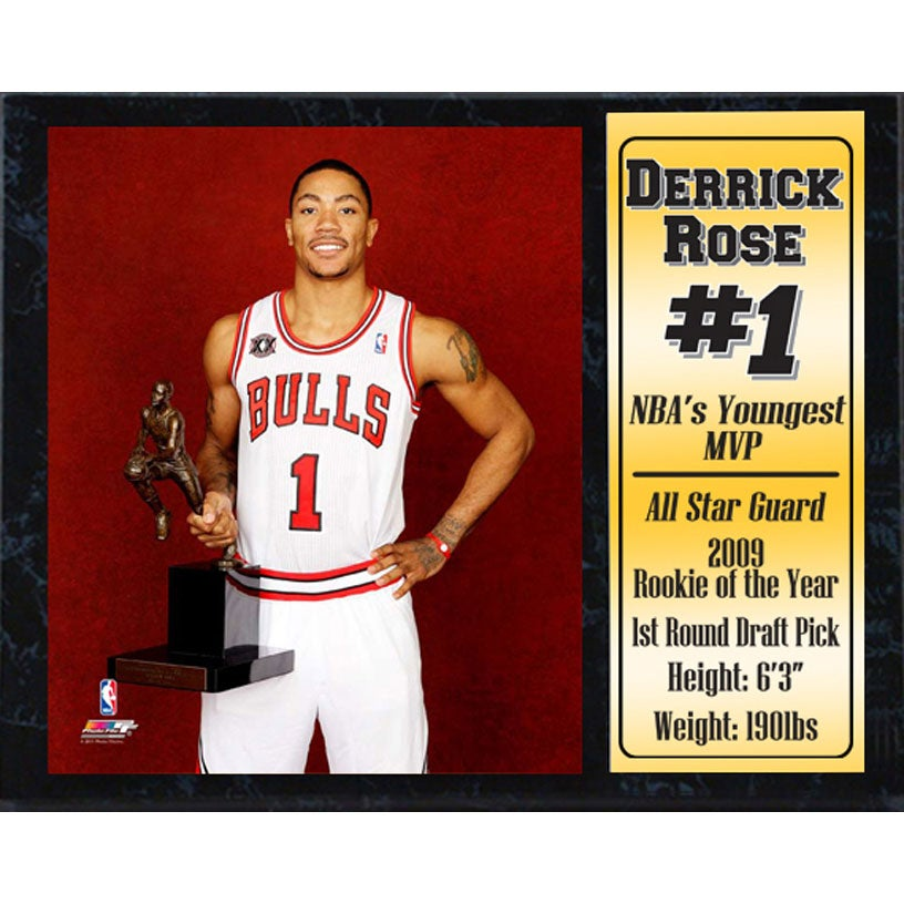 Chicago Bulls Derrick Rose 'MVP' 12x15 Stat Plaque