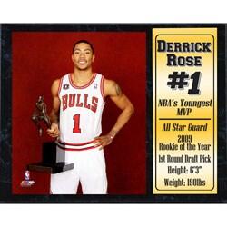 Chicago Bulls Derrick Rose 'MVP' 12x15 Stat Plaque