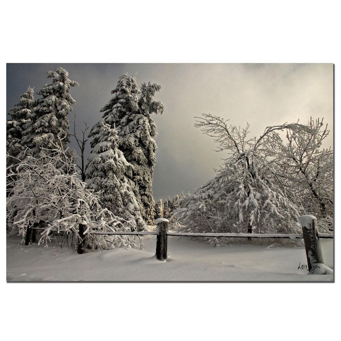 Lois Bryan 'Winter Scene II' Canvas Art