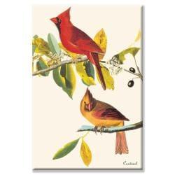 John James Audubon 'Cardinal' Canvas Art