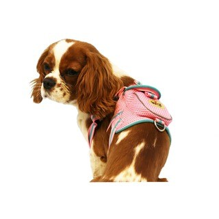 Pet Life Pink and Blue Adjustable Mesh Harness with Back Pouch