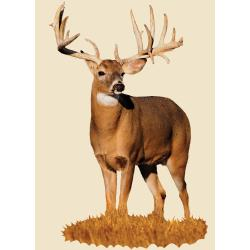 Mossy Oak Monster Buck with Drop Tyne Indoor Wall Graphic