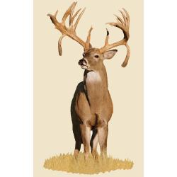 Mossy Oak Monster Buck with Double Drop Tyne Indoor Wall Graphic