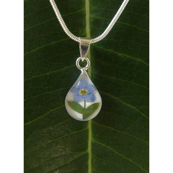 Sterling Silver Single Forgetmenot Flower Tear Drop Necklace (Mexico)
