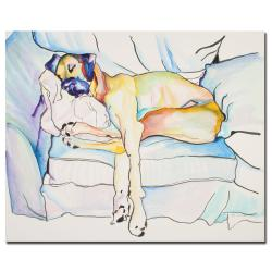 Pat Saunders-White 'Sleeping Beauty' Canvas Art