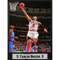 Chicago Bulls Carlos Boozer Plaque