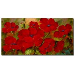 Rio 'Poppies' Gallery-wrapped Canvas Art - Thumbnail 0