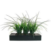 Vintage Laura Ashley Green Artificial Grass in Contemporary Black Wood Planter