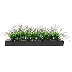 Vintage Laura Ashley Green Grass in Contemporary Wood Planter - Thumbnail 0