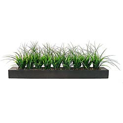 Laura Ashley Green Grass in Contemporary Wood Planter|https://ak1.ostkcdn.com/images/products/6031220/Laura-Ashley-Green-Grass-in-Contemporary-Wood-Planter-P13712160.jpg?impolicy=medium